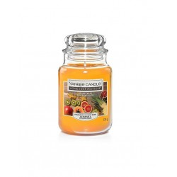 Yankee Candle Giara Grande Frutti Esotici 538gr